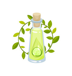 oil and slice of cucumber in glass bottle with vector image