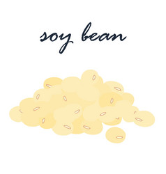 Soy bean vegetarian ingredient food vector