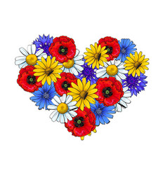 Wild flowers - poppy chamomile cornflower daisy vector