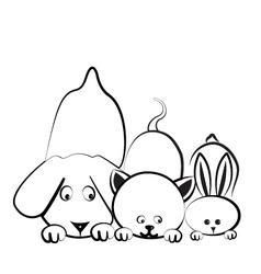 Dog cat and rabbit logo vector image