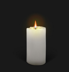 Burning white candle on a black background vector