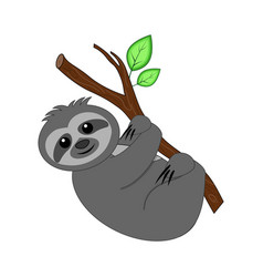cute cartoon sloth vector image