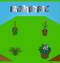Isometric plant set of plant flower flowerpot vector