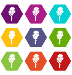 linden icon set color hexahedron vector image
