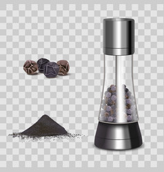 realistic 3d detailed spice mills and elements vector image