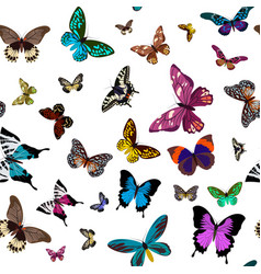 seamless colorful pattern design with butterflies vector image