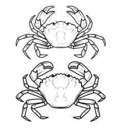 set of crabs icons isolated on white background vector image