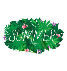 summer leaves exotic palm vector image