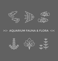 thin line icons - aquarium flora and fauna vector image
