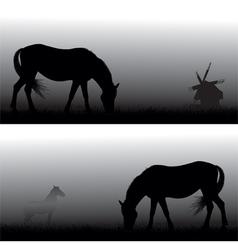 feeding horses in fog vector image vector image
