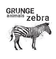 silhouette zebra in grunge design style animal vector image
