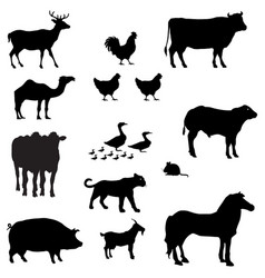 enormous animals silhouettes collection vector image