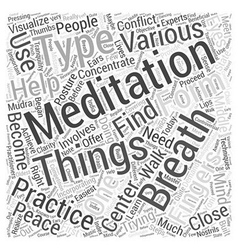 Meditation center Word Cloud Concept vector
