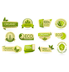 organic food labels eco and bio natural products vector image