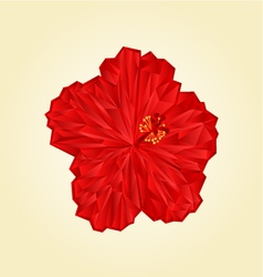 Red hibiscus flower chinese rose polygons vector