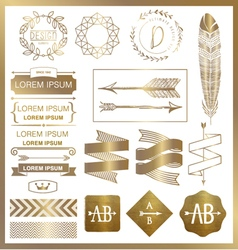 set gold graphic design elements vector image