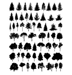 set silhouette tree vector image