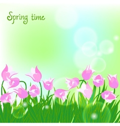 Spring card background with pink tulips vector