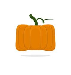 Square pumpkin Unusual Vegetable for Halloween vector