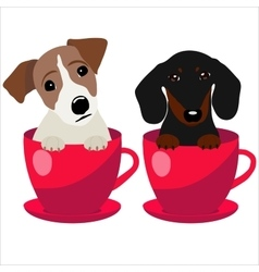 Jack Russell Terrier and Dachshund dog in red vector image vector image