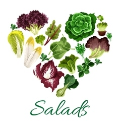 Green leafy vegetables in shape of a heart vector image