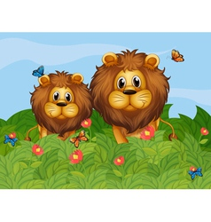 A big and a young lion in the garden vector image