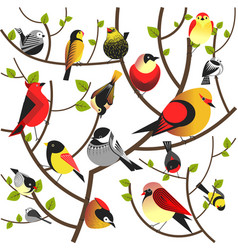 Birds sitting on tree branch flat different vector