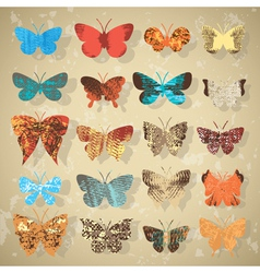 collection of different butterflies vector image