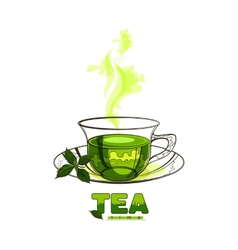 Cup of green tea with mint leaves vector