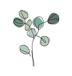 Eucalyptus branch in modern single line art style vector