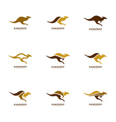 set of kangaroo logo design template kangaroo vector image