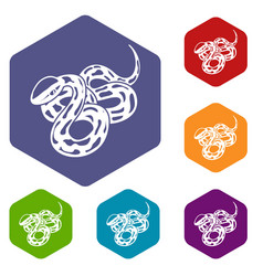texas snake icons hexahedron vector image