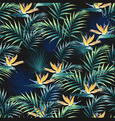 tropical leaves and paradise strelitzia flowers vector image