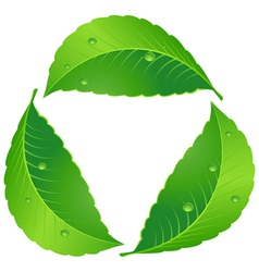 Symbol of recycle vector image