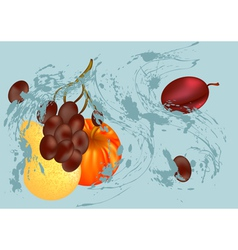 splash and fruit vector image vector image