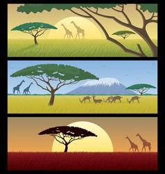 africa landscapes vector image