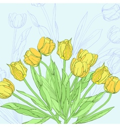 Background with yellow tulips vector image