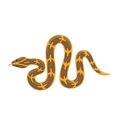 burmese python animal standing on a white vector image