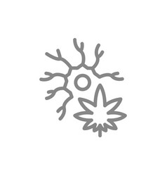 cannabis leaf with neuron line icon medical vector image