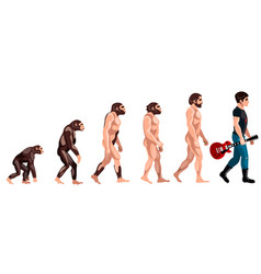 Evolution from monkey to musician vector