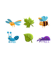 Flat set of funny insects and green leaves vector