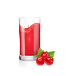 juice with red currants in a glass realistic vector image