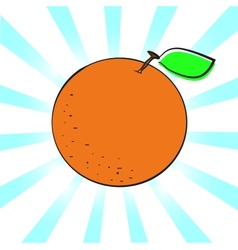 Orange A vector image