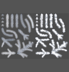set of white coniferous branches vector image