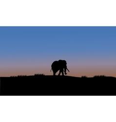 Single elephant silhouette vector image vector image