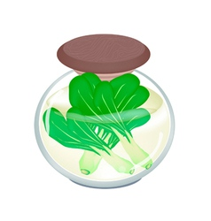 A Jar of Delicious Pickled Baby Pakchoi vector image