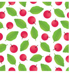 Berrypattern-02 vector