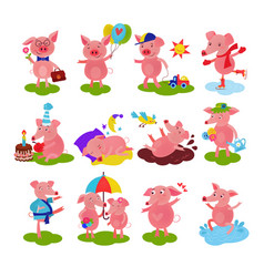 cartoon pig piglet or piggy character on vector image