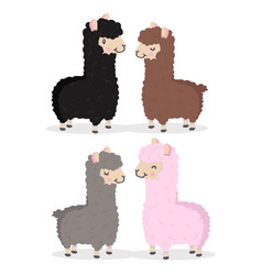 cute alpaca couple vector image