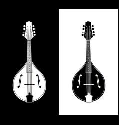 flat detailed of mandolins vector image